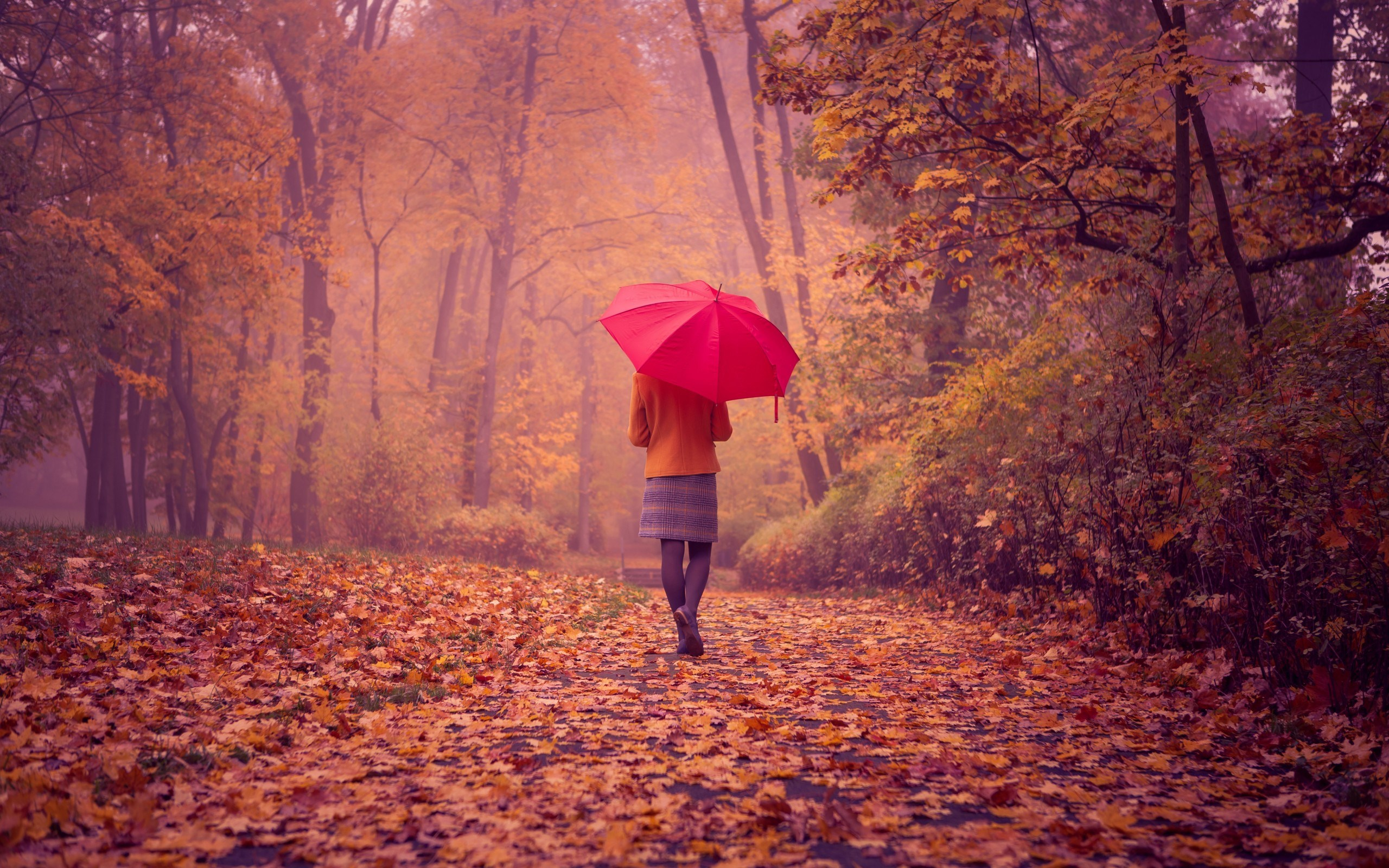 6987575-girl-red-umbrella-fall-road-nature